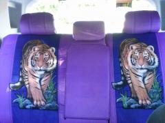 Love my Tigers :)
