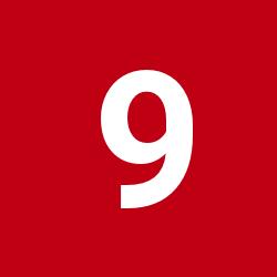 95fiji